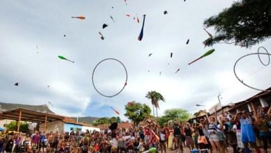 Photo of Chapada: Palmeiras sedia encontro de circo e arte neste domingo