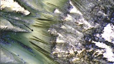 Photo of Mundo: Imagens da Nasa revelam sinais de que a água ainda flui em Marte