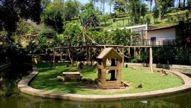 Photo of Zoológico de Salvador fica fechado durante o Carnaval