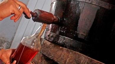 Photo of São João: Veja a receita do licor 'chapada' que tem castanha, chocolate e amendoim