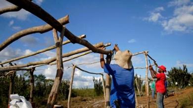 Photo of Chapada: MST mantém ocupação de fazenda no município de Baixa Grande