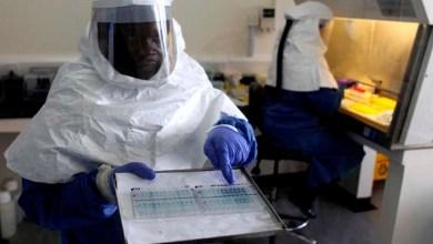 Photo of OMS avalia medicamentos e vacinas contra o ebola