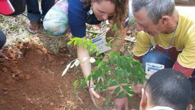 Photo of Chapada: Oficina promove a criação da rede de sementes e mudas do Paraguaçu