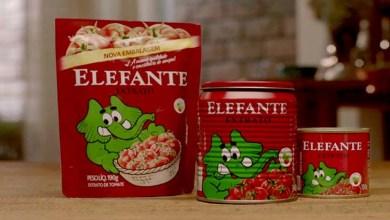 Photo of Extrato de tomate com pelo de roedor tem lote interditado pela Anvisa