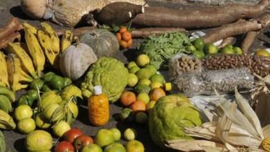 Photo of Chapada: Ifba de Jacobina divulga chamada pública para aquisição de alimentos da agricultura familiar