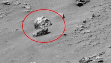 Photo of Internautas se perguntam: Será um crânio no solo de Marte?