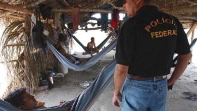 Photo of Brasil é referência no combate ao trabalho escravo, diz a OIT