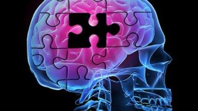 Photo of Estudo traz descoberta promissora no combate ao Alzheimer