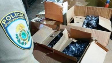 Photo of Flagrante na BR-116 apreende mais de R$ 225 mil em produtos, diz PRF