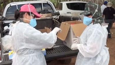 Photo of Ministério da Saúde confirma primeiro caso da febre do Nilo no Brasil