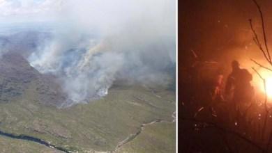 Photo of Chapada: Brigadas da região trabalham seis dias para extinguir incêndio em Mucugê