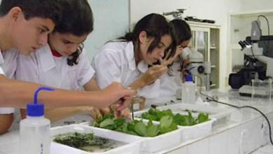 Photo of Inscrições para a Olimpíada Brasileira de Biologia seguem até 13 de março