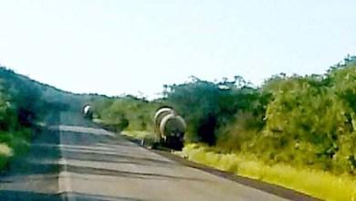Photo of Chapada: Trecho de estrada em Seabra fica interditado após acidente de carreta com amônia