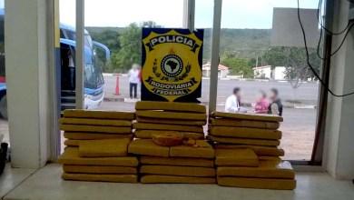 Photo of Chapada: PRF apreende maconha e pasta base de cocaína na região de Seabra