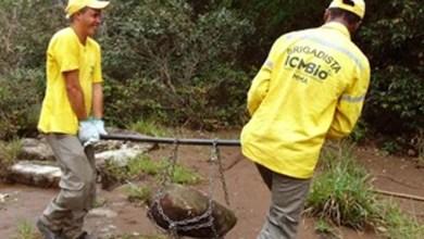 Photo of Chapada: Trilhas em Ibicoara passam por manutenção; confira algumas dicas para acampar