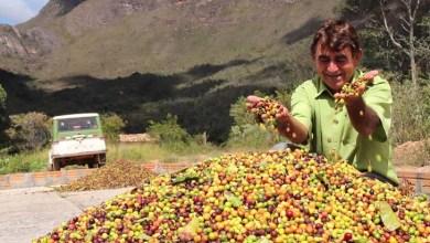 Photo of Globo Rural: Clima da Chapada Diamantina favorece a produção do café gourmet