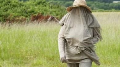 Photo of Mulher britânica pode morrer se tiver contato com rede wi-fi e celular