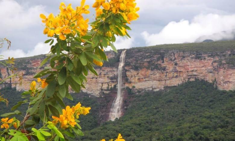 Photo of Iramaia revela belezas intocáveis da Chapada Diamantina; conheça trilhas na Raposa