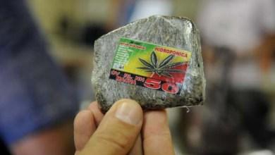 Photo of Julgamento no STF pode levar Brasil a descriminalizar porte de drogas