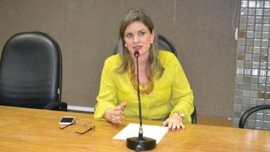 Photo of Deputada contesta informações de que pretende desfazer decreto que cria Parque Estadual