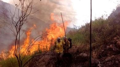 Photo of MPF pede que União, Ibama e ICMBio cumpram decisão para estruturar o Parque Nacional da Chapada Diamantina