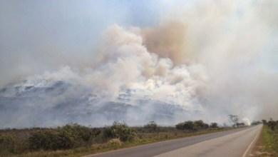 Photo of Incêndio florestal atinge Parque Nacional da Chapada Diamantina e preocupa moradores