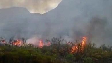 Photo of Fogo continua na Chapada Diamantina e brigadistas querem ajuda de helicópteros em Andaraí