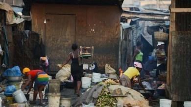 Photo of Fome no mundo em desenvolvimento diminuiu 27% em 15 anos, mostra estudo
