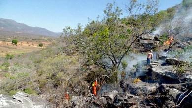 Photo of Incêndios voltam a atingir região da Chapada Diamantina; Ituaçu ainda combate o fogo