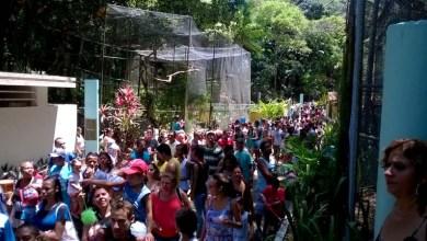 Photo of Salvador: Zoológico funciona normalmente no feriado de Finados