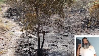 Photo of Está parecendo uma 'Torre de Babel', diz presidente da Cifa sobre combates aos incêndios na Chapada