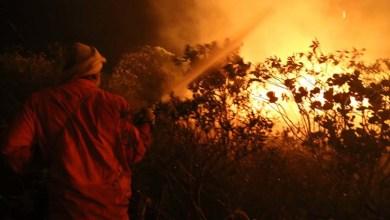 Photo of Governo aponta avanços nos combates e diz que alguns incêndios foram controlados na Chapada