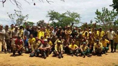 Photo of Brasil: Acaba incêndio na Chapada dos Veadeiros; parque deve ser reaberto na quarta
