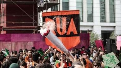 Photo of Brasil: Parlamentares lançam ofensiva para impedir STF de descriminalizar drogas no país