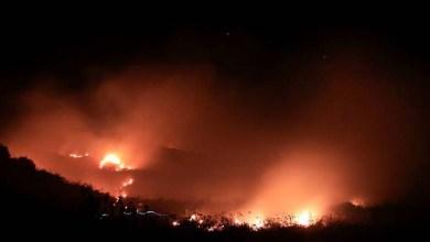 """Photo of Fogo na Chapada: Novo incêndio é relatado por brigadista em Andaraí: """"Não fomos alertados"""""""