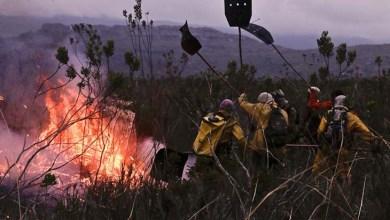 Photo of Combates aos focos de incêndios na Chapada Diamantina são intensificados; confira avanços