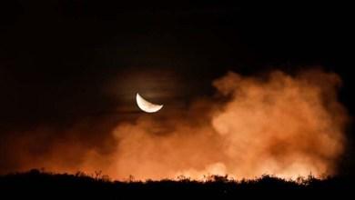 Photo of MPF pede que a Polícia Federal apure se incêndios na Chapada Diamantina são criminosos