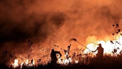 Photo of Matéria da TV Aratu mostra a madrugada de combate a incêndio na Chapada Diamantina; confira vídeo