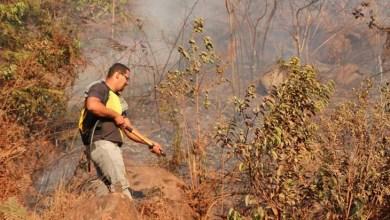 Photo of Chapada: Combate a grande incêndio em Ibicoara ganha reforço da equipe do Bahia Sem Fogo
