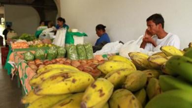 Photo of Chapada: Jacobina debate sobre produção familiar agroecológica no Semiárido durante encontro