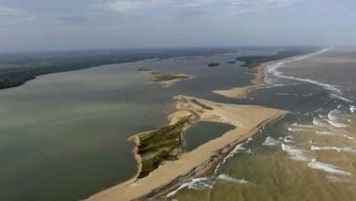 Photo of Ministra reconhece que lama vai causar morte de muitas espécies no mar
