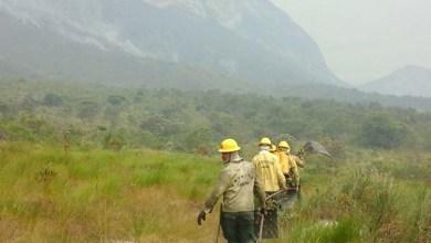 Photo of Uefs em Lençóis apoia campanha de prevenção contra incêndios na Chapada Diamantina