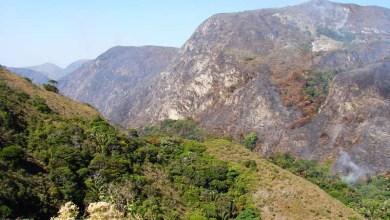 Photo of Focos se intensificam na Chapada Norte; Parque Estadual é atingido e chamas ameaçam nascentes