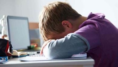 Photo of Psicanalista aponta alternativas para ajudar crianças a superarem o cyberbullying