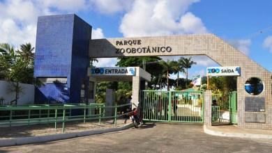 Photo of Salvador: Zoológico tem programação alterada durante Carnaval