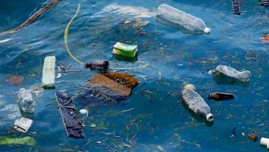 Photo of Oceanos em 2050 vão ter mais plástico do que peixes, alerta Fórum de Davos