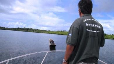 Photo of Salvador: Inema combate pesca predatória em mercados e na Baía de Todos os Santos