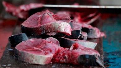 Photo of Semana Santa: Pescados são vendidos com descontos de até 60% em Salvador