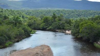 Photo of Chapada: Projeto na bacia do Rio Paraguaçu mostra resultados positivos