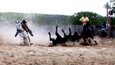 """Photo of Deputado estadual diz que """"vaquejada não está proibida na Bahia'"""